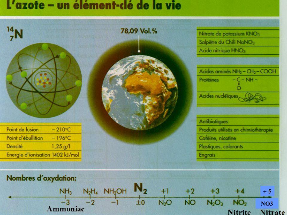 4 Ammoniac Nitrite + 5 Nitrate NO3