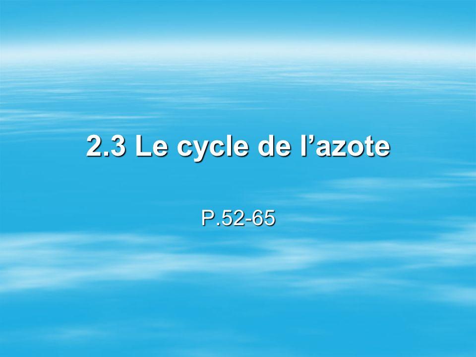 Le cycle de lazote Le cycle de lazote consiste en des processus de nitrification et de dénitrification qui sont reliés lun à lautre.