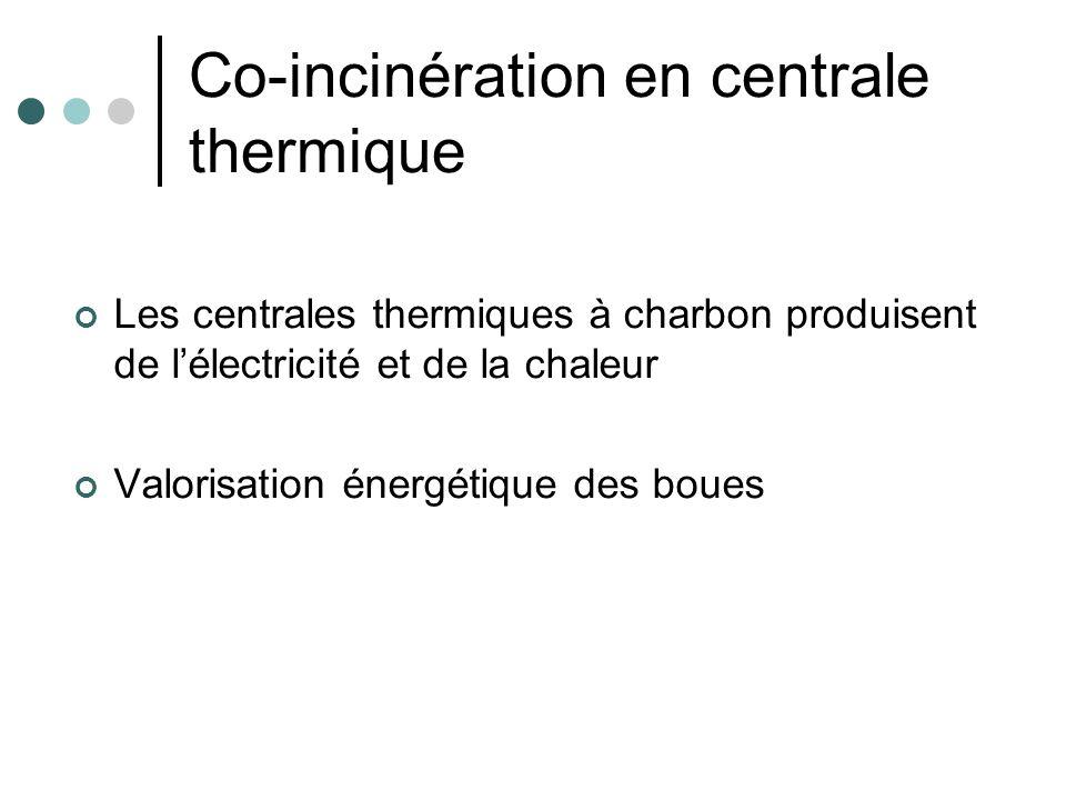 Co-incinération en centrale thermique Les centrales thermiques à charbon produisent de lélectricité et de la chaleur Valorisation énergétique des boue