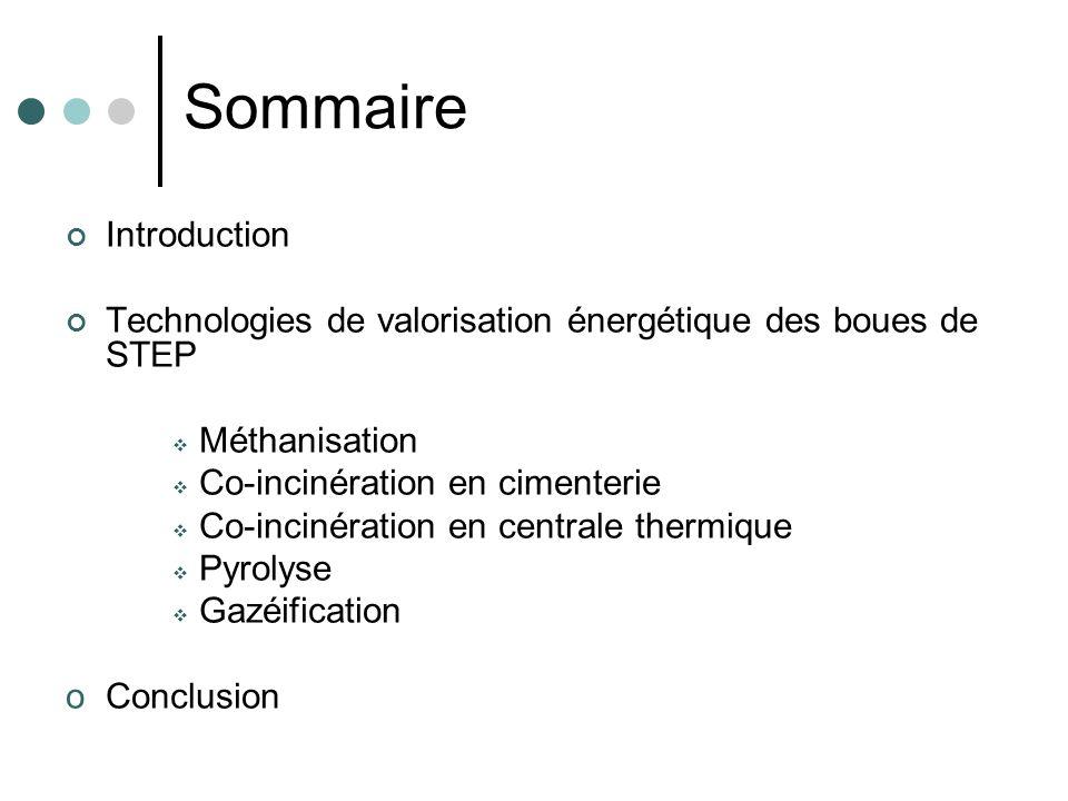 Sommaire Introduction Technologies de valorisation énergétique des boues de STEP Méthanisation Co-incinération en cimenterie Co-incinération en centra