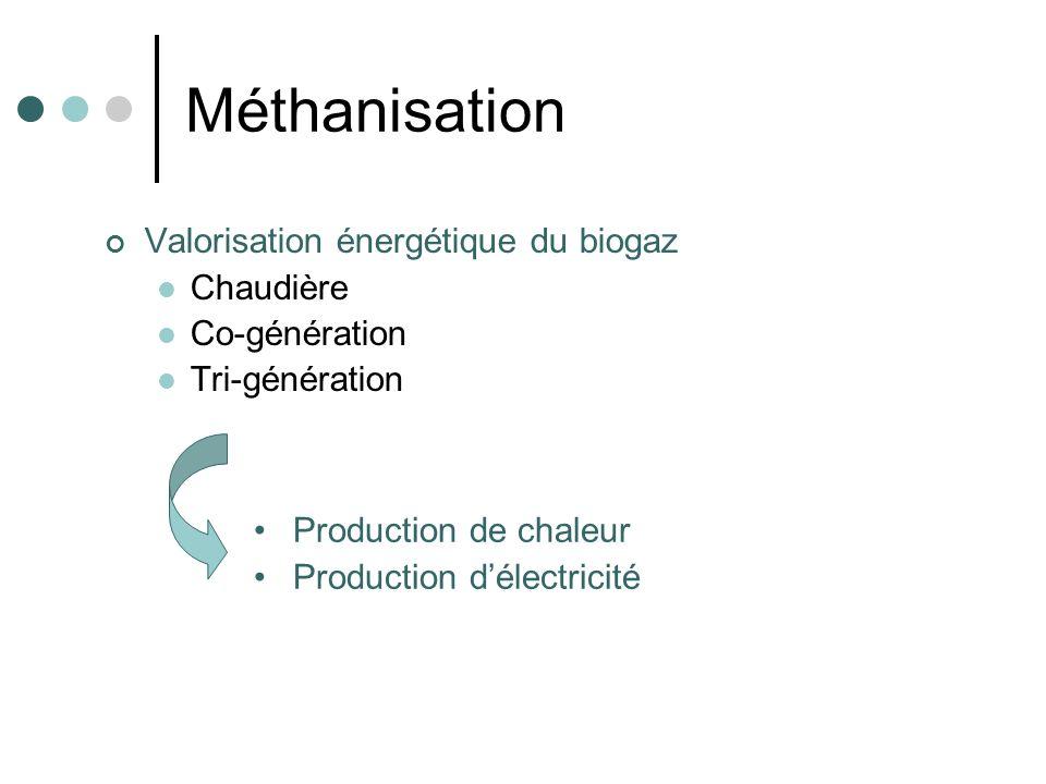 Méthanisation Avantages Valorisation du méthane contribue à la diminution des consommations en énergie fossile Valorisation énergétique du biogaz contribue à la réduction de leffet de serre et des odeurs (CO 2 effet de serre 21 fois moins grand que CH 4 ) Faible consommation énergétique, consommation de la chaleur produite pour le chauffage des digesteurs Inconvénients Coûts dinvestissement très élevés pour une petite structure Émissions de H 2 S, gaz à effet de serre