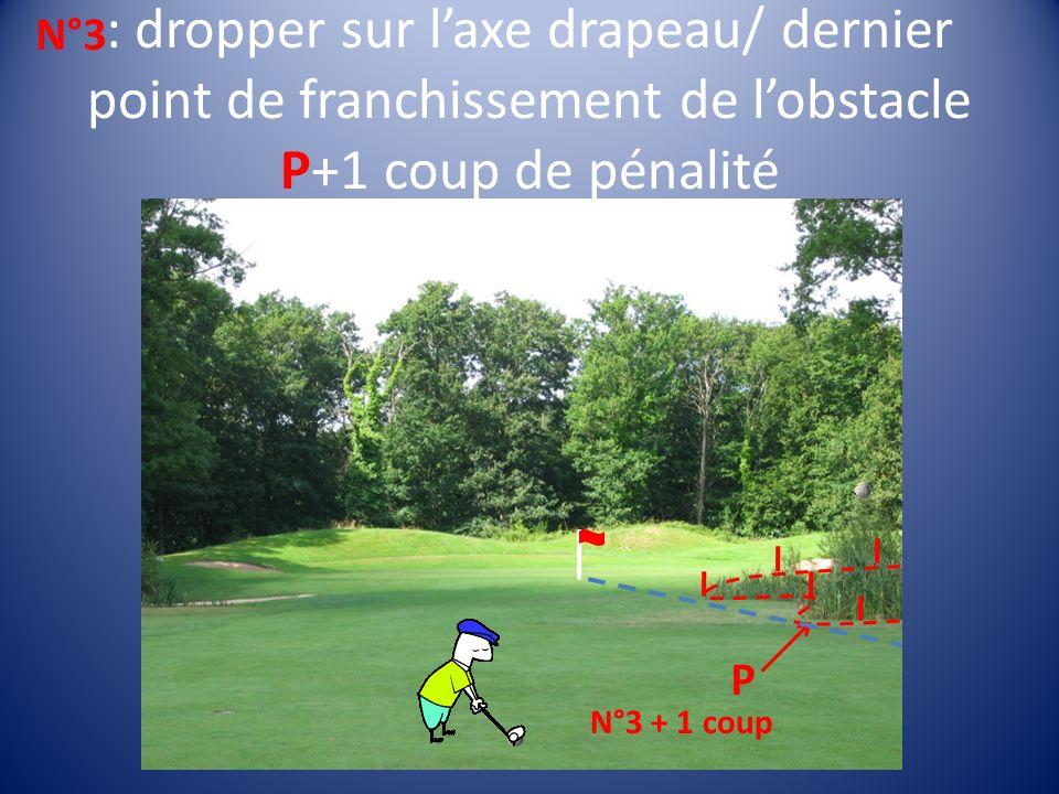 : dropper sur laxe drapeau/ dernier point de franchissement de lobstacle P+1 coup de pénalité N°3 N°3 + 1 coup P