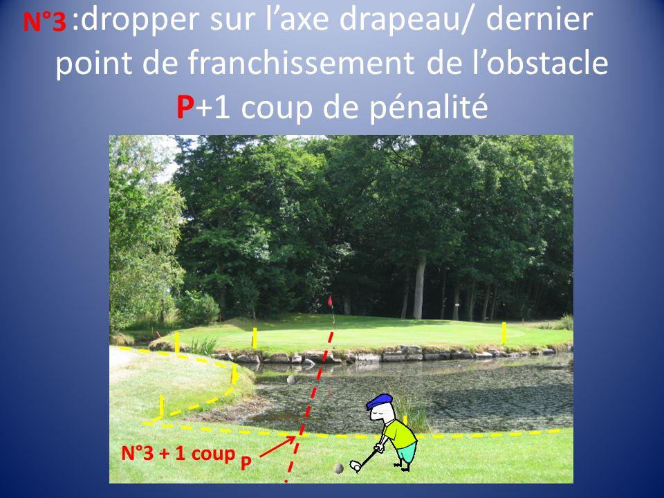 :dropper sur laxe drapeau/ dernier point de franchissement de lobstacle P+1 coup de pénalité N°3 + 1 coup P N°3