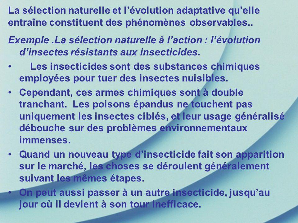 La sélection naturelle et lévolution adaptative quelle entraîne constituent des phénomènes observables.. Exemple.La sélection naturelle à laction : lé