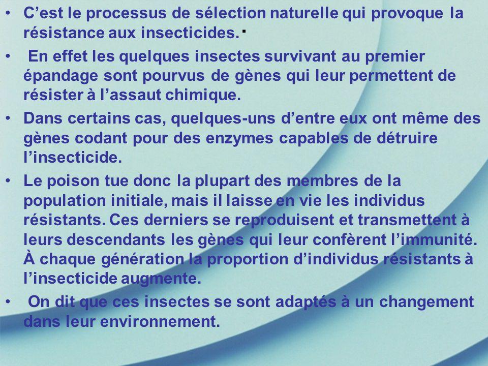 . Cest le processus de sélection naturelle qui provoque la résistance aux insecticides. En effet les quelques insectes survivant au premier épandage s