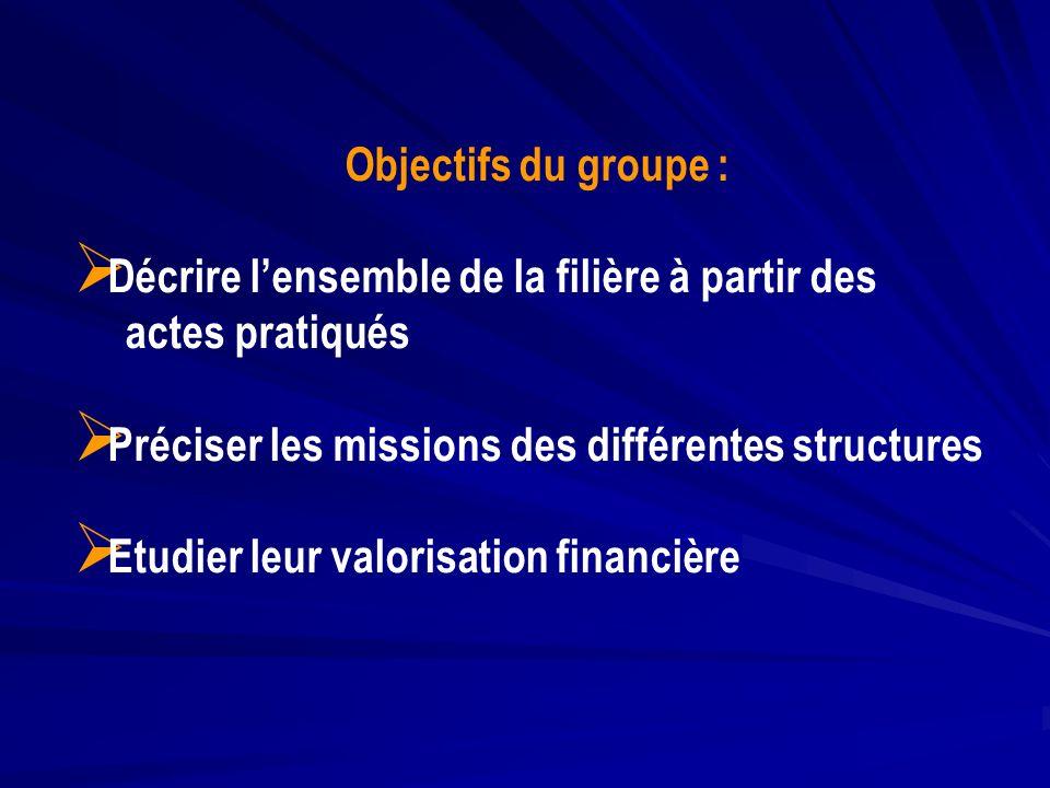 Objectifs du groupe : Décrire lensemble de la filière à partir des actes pratiqués Préciser les missions des différentes structures Etudier leur valor
