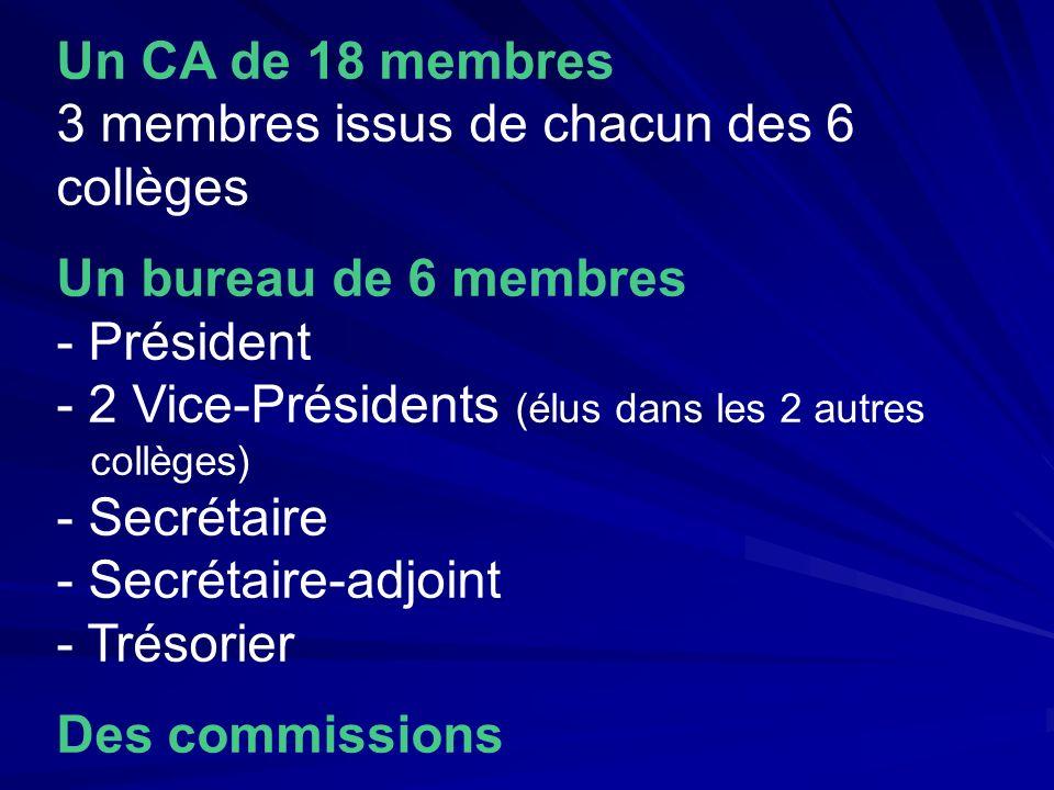 Un CA de 18 membres 3 membres issus de chacun des 6 collèges Un bureau de 6 membres - Président - 2 Vice-Présidents (élus dans les 2 autres collèges)