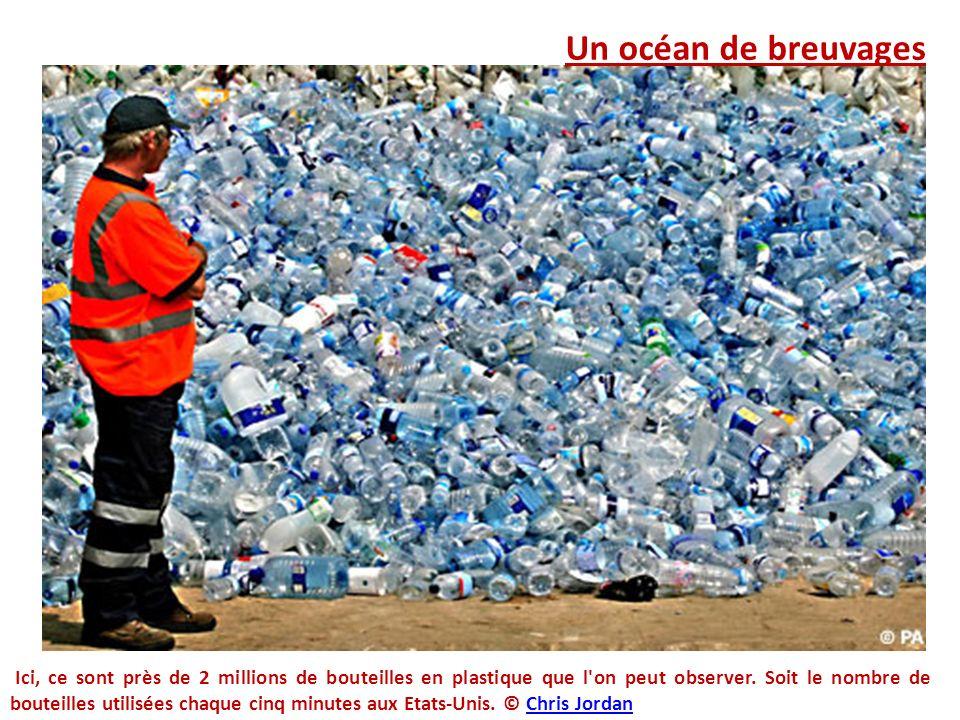 Un océan de breuvages Ici, ce sont près de 2 millions de bouteilles en plastique que l'on peut observer. Soit le nombre de bouteilles utilisées chaque
