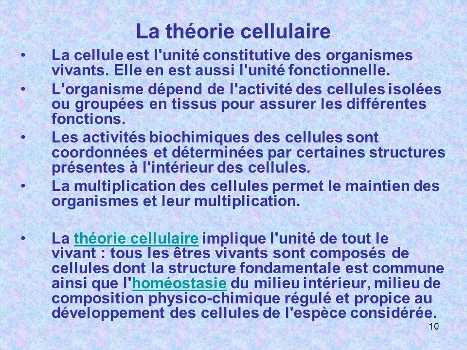 La théorie cellulaire La cellule est l'unité constitutive des organismes vivants. Elle en est aussi l'unité fonctionnelle. L'organisme dépend de l'act