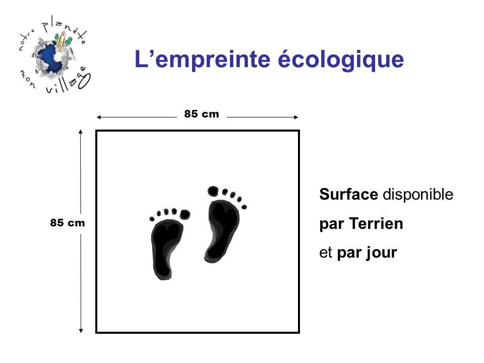 Lempreinte écologique 85 cm Surface disponible par Terrien et par jour