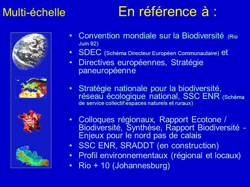 Multi-échelle En référence à : Convention mondiale sur la Biodiversité (Rio Juin 92) SDEC ( Schéma Directeur Européen Communautaire) et Directives eur
