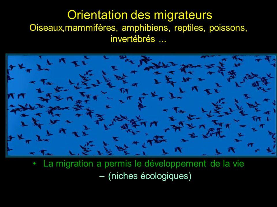 Orientation des migrateurs Oiseaux,mammifères, amphibiens, reptiles, poissons, invertébrés... La migration a permis le développement de la vie –(niche