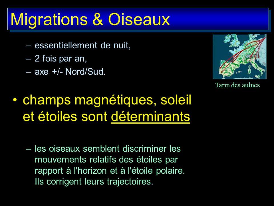 Migrations & Oiseaux –essentiellement de nuit, –2 fois par an, –axe +/- Nord/Sud. champs magnétiques, soleil et étoiles sont déterminants –les oiseaux