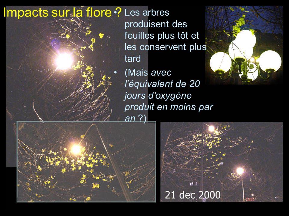 Impacts sur la flore ? Les arbres produisent des feuilles plus tôt et les conservent plus tard (Mais avec léquivalent de 20 jours doxygène produit en