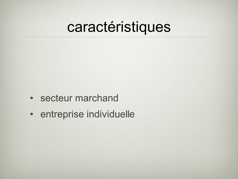 caractéristiques secteur marchand entreprise individuelle