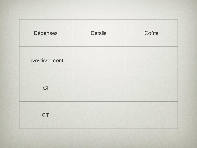 DépensesDétailsCoûts Investissement CI CT