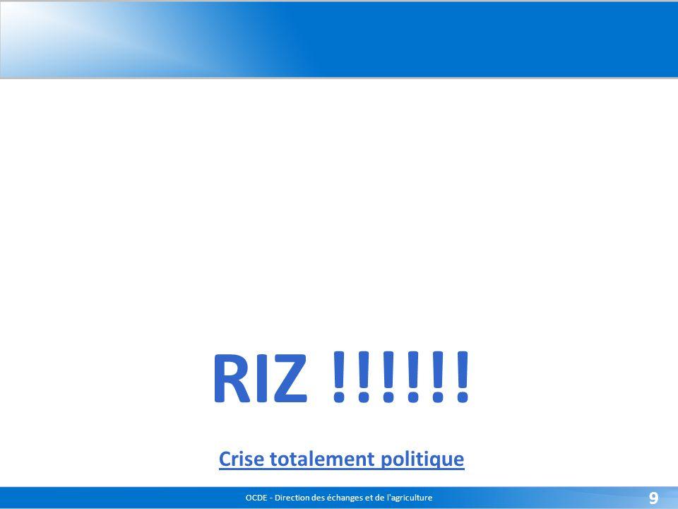 OCDE - Direction des échanges et de l agriculture 9 RIZ !!!!!! Crise totalement politique
