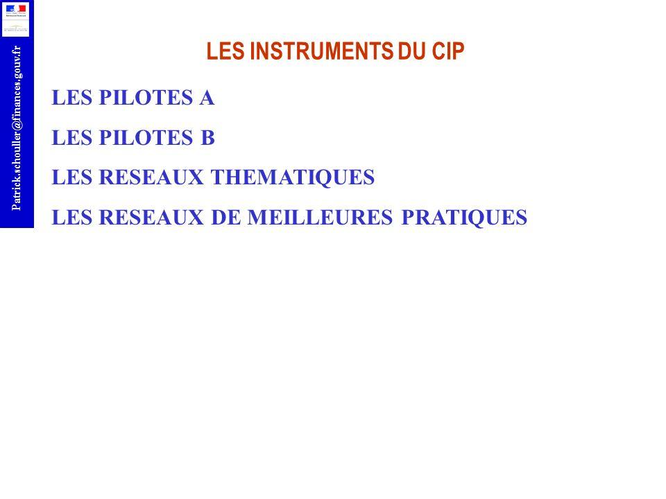 r Patrick.schouller@finances.gouv.fr LES INSTRUMENTS DU CIP LES PILOTES A LES PILOTES B LES RESEAUX THEMATIQUES LES RESEAUX DE MEILLEURES PRATIQUES