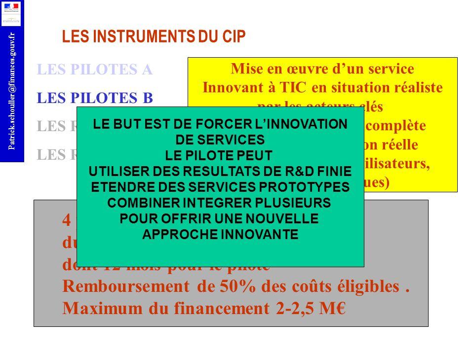 r Patrick.schouller@finances.gouv.fr LES INSTRUMENTS DU CIP LES PILOTES A LES PILOTES B LES RESEAUX THEMATIQUES LES RESEAUX DE MEILLEURES PRATIQUES 4