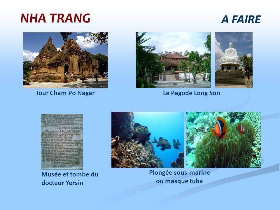 A FAIRE NHA TRANG Musée et tombe du docteur Yersin Plongée sous-marine ou masque tuba Tour Cham Po NagarLa Pagode Long Son