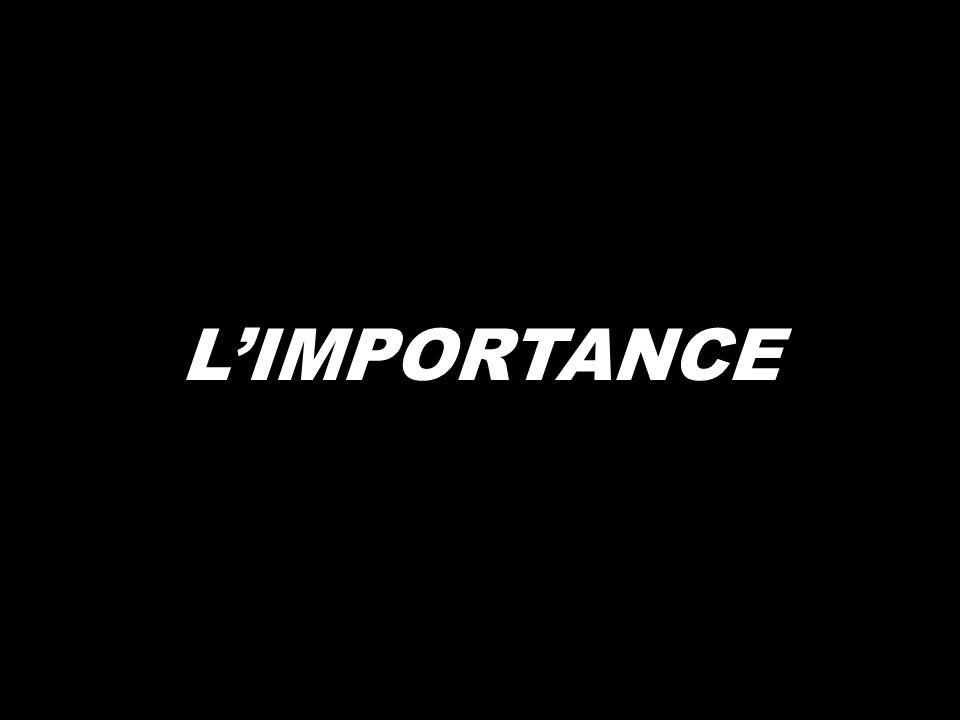 LIMPORTANCE