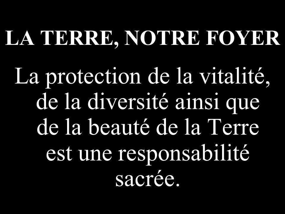 LA TERRE, NOTRE FOYER La protection de la vitalité, de la diversité ainsi que de la beauté de la Terre est une responsabilité sacrée.