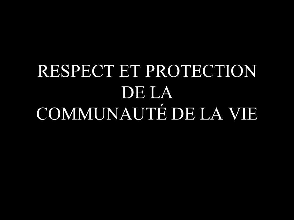 RESPECT ET PROTECTION DE LA COMMUNAUTÉ DE LA VIE