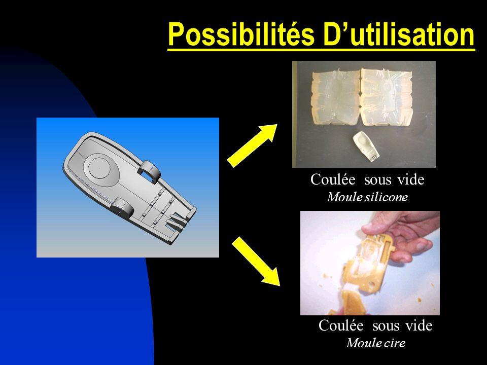 Possibilités Dutilisation Coulée sous vide Moule silicone Coulée sous vide Moule cire