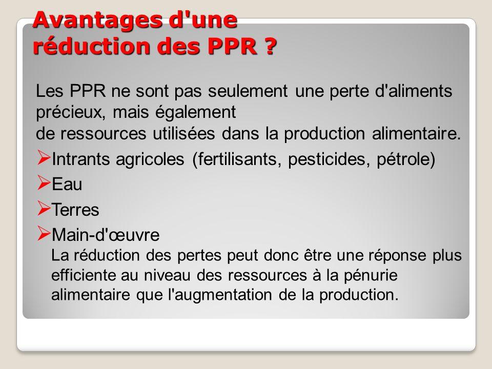 Avantages d'une réduction des PPR ? Les PPR ne sont pas seulement une perte d'aliments précieux, mais également de ressources utilisées dans la produc