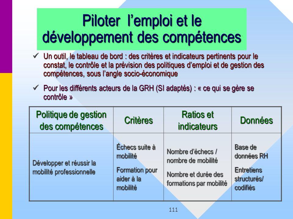 111 Piloter lemploi et le développement des compétences Un outil, le tableau de bord : des critères et indicateurs pertinents pour le constat, le cont