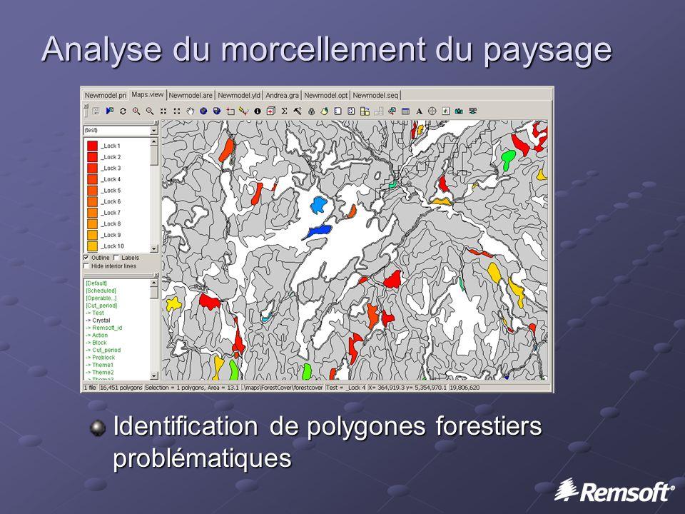 Analyse du morcellement du paysage Identification de polygones forestiers problématiques