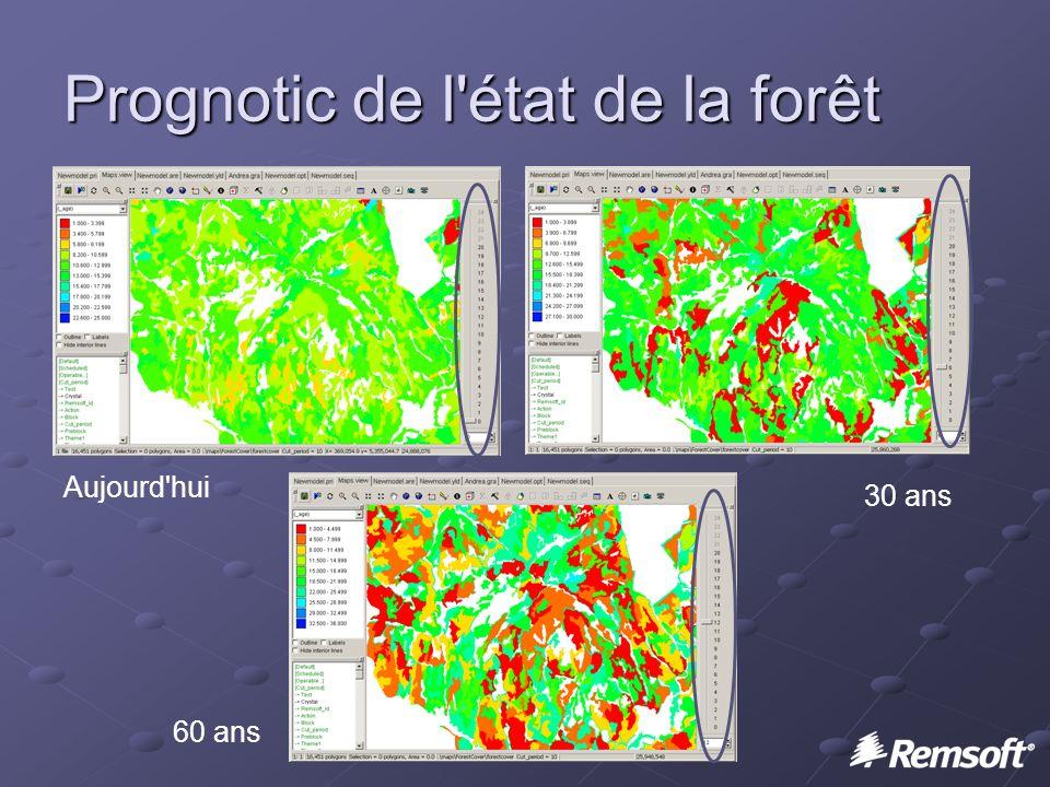 Prognotic de l état de la forêt Aujourd hui 60 ans 30 ans