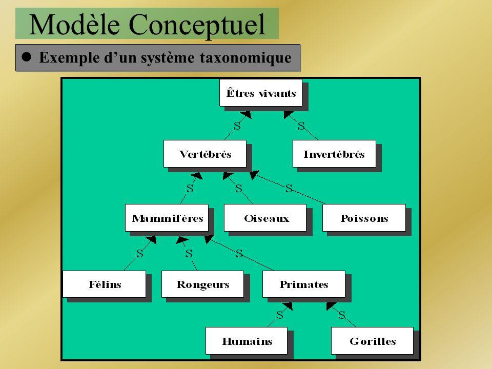 Modèle Conceptuel lExemple dun système taxonomique