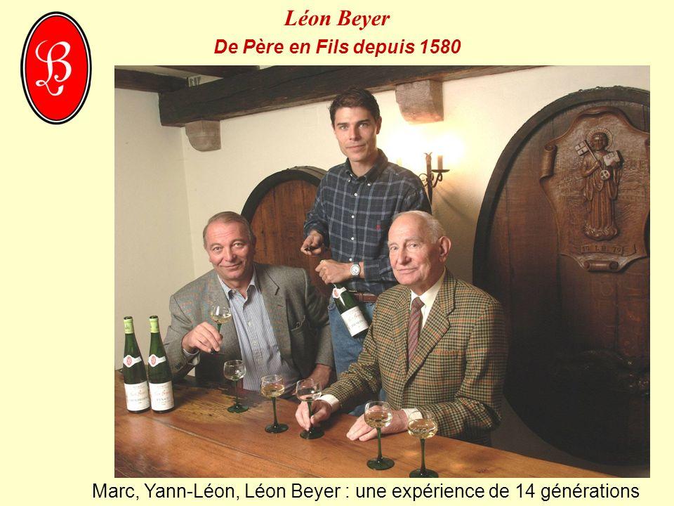 Des vins de fines sélections dans les différents cépages, millésimes, et provenances, de très belles bouteilles, d un excellent rapport-qualité prix, pour leur typicité, leur qualité et leur élégance.