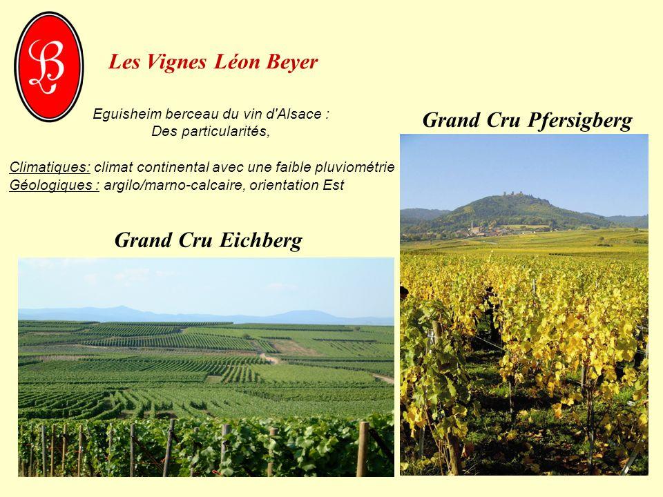 Les Vignes Léon Beyer Eguisheim berceau du vin d'Alsace : Des particularités, Climatiques: climat continental avec une faible pluviométrie Géologiques