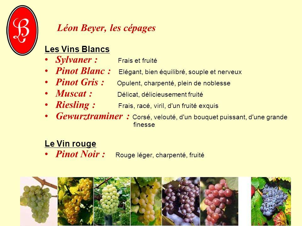 Léon Beyer, les cépages Les Vins Blancs Sylvaner : Frais et fruité Pinot Blanc : Elégant, bien équilibré, souple et nerveux Pinot Gris : Opulent, char