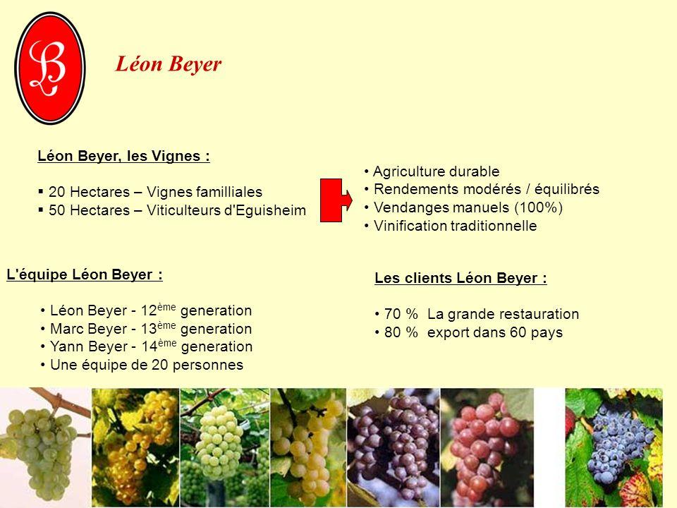 Léon Beyer Léon Beyer, les Vignes : 20 Hectares – Vignes familliales 50 Hectares – Viticulteurs d'Eguisheim L'équipe Léon Beyer : Léon Beyer - 12 ème