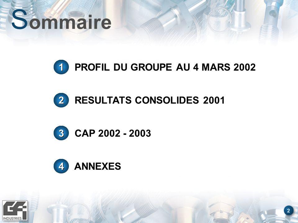 GROUPE GFI INDUSTRIES PROFIL DU GROUPE AU 4 MARS 2002
