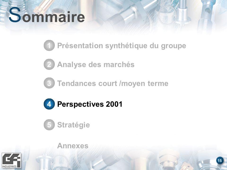 15 S ommaire Présentation synthétique du groupe1 Stratégie5 Annexes Analyse des marchés2 Tendances court /moyen terme3 Perspectives 20014 4