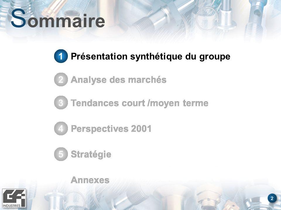 2 S ommaire Présentation synthétique du groupe1 Analyse des marchés2 Tendances court /moyen terme3 Perspectives 20014 Stratégie5 Annexes Stratégie5 An