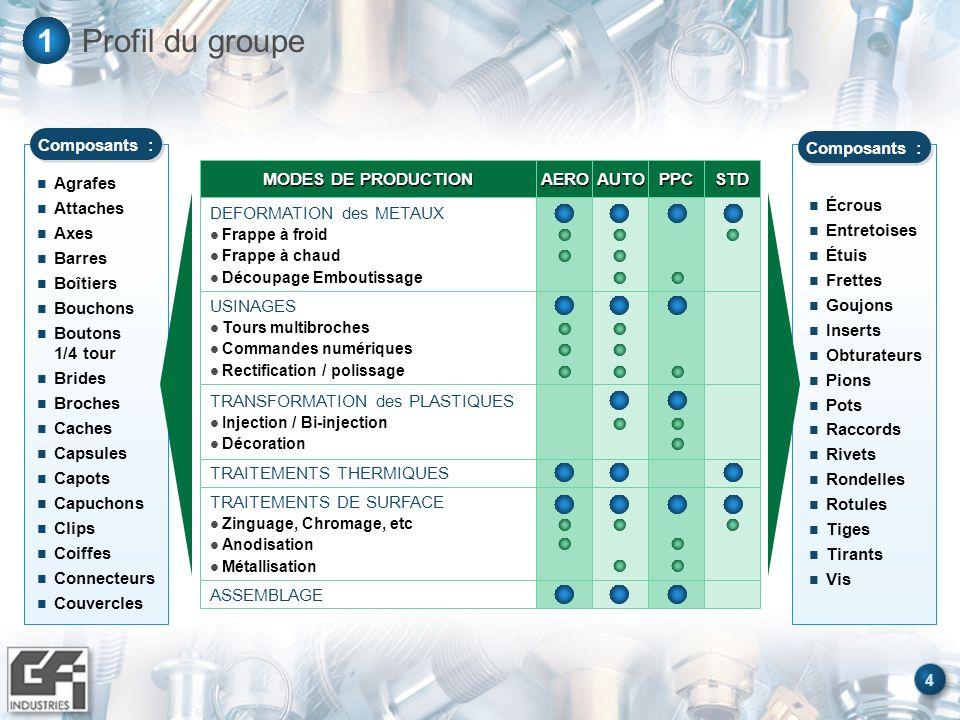 5 Profil du groupe1 Une activité équilibrée sur des segments aux cycles opposés Aerospace 33% Automotive 46% Packaging 12% Autres 9% Export 41% France 59% Autres 1,5% Alena 10,8% Europe 29,1% CA 2000 : 541 M