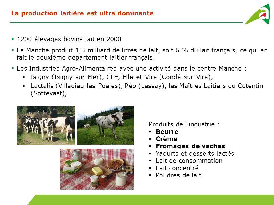 1200 élevages bovins lait en 2000 La Manche produit 1,3 milliard de litres de lait, soit 6 % du lait français, ce qui en fait le deuxième département