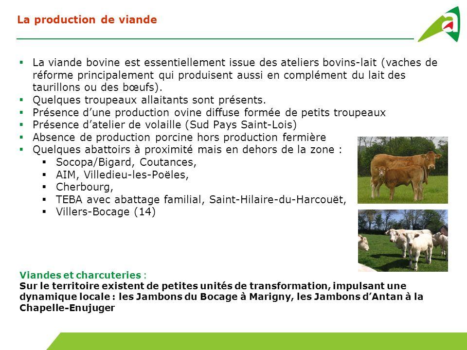 La production de viande La viande bovine est essentiellement issue des ateliers bovins-lait (vaches de réforme principalement qui produisent aussi en