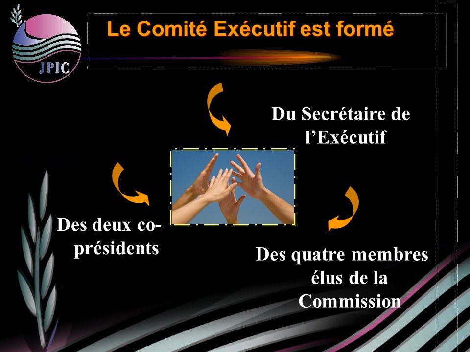 Du Secrétaire de lExécutif Des deux co- présidents Des quatre membres élus de la Commission Le Comité Exécutif est formé