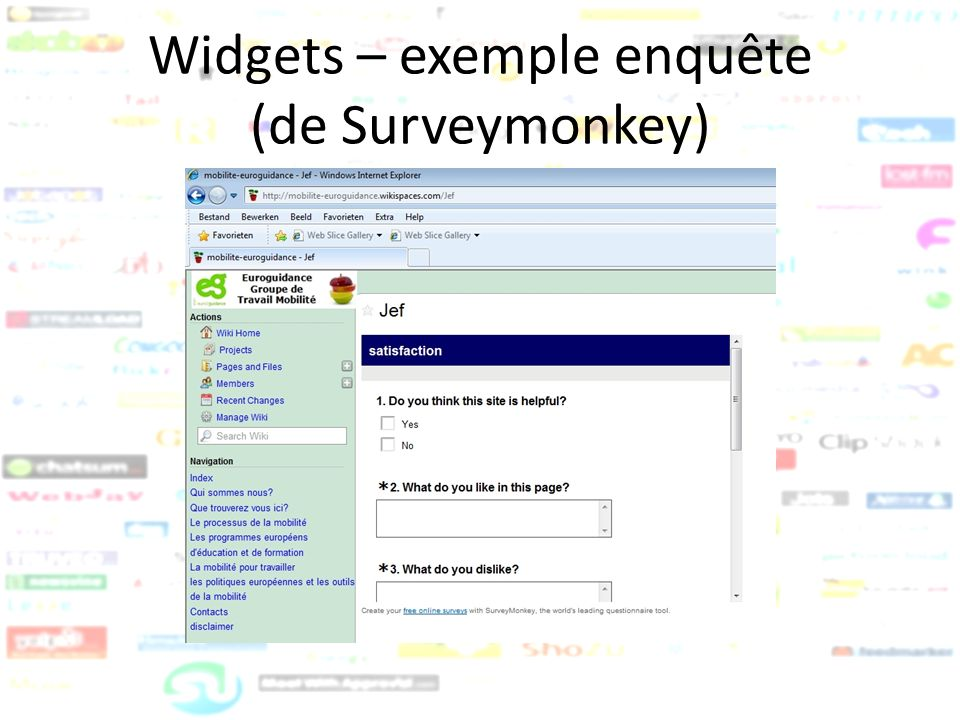 Widgets – exemple enquête (de Surveymonkey)