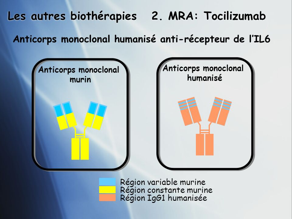 Les autres biothérapies 2. MRA: Tocilizumab Région variable murine Région constante murine Région IgG1 humanisée Anticorps monoclonal humanisé Anticor