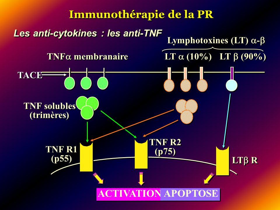 Immunothérapie de la PR Les anti-cytokines : les anti-TNF TNF membranaire Lymphotoxines (LT) - LT (10%) LT (90%) TNF R1 (p55) TNF R2 (p75) LT R ACTIVA