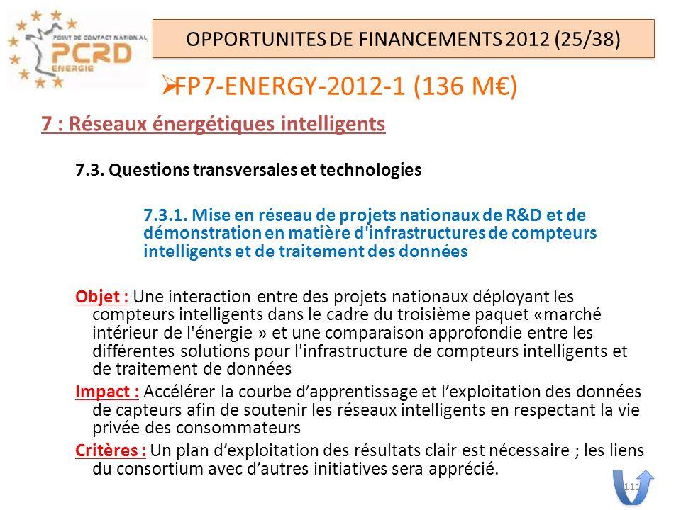 7 : Réseaux énergétiques intelligents 7.3. Questions transversales et technologies 7.3.1. Mise en réseau de projets nationaux de R&D et de démonstrati