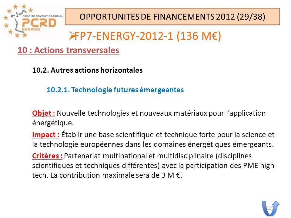 10 : Actions transversales 10.2. Autres actions horizontales 10.2.1. Technologie futures émergeantes Objet : Nouvelle technologies et nouveaux matéria