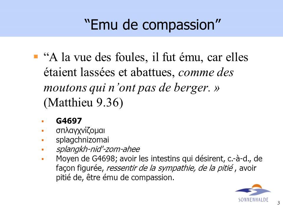 3 Emu de compassion A la vue des foules, il fut ému, car elles étaient lassées et abattues, comme des moutons qui nont pas de berger. » (Matthieu 9.36